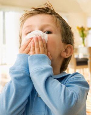 Los Tipos de Virus de la Influenza